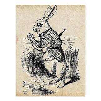 Vintage White Rabbit Postcard