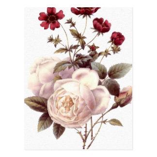 Vintage White Rose Bouquet Postcard