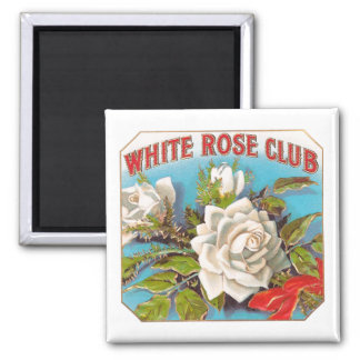 Vintage White Rose Club Flowers Square Magnet