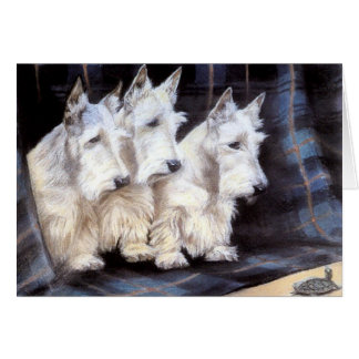 Vintage White Scottish Terriers Scotties Card