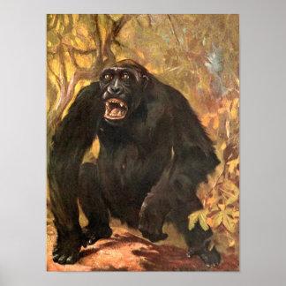 Vintage Wild Animal, Gorilla or Big Ape by CE Swan Poster