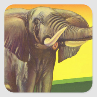 Vintage Wild Animals, African Elephant with Sunset Square Sticker