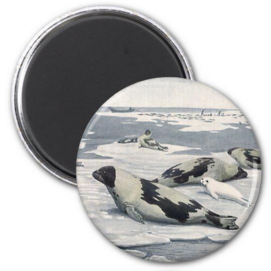 Vintage Wild Animals, Artic Harbour Seals Icebergs 6 Cm Round Magnet