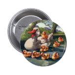 Vintage Wild Animals Birds, Ducklings Duck Family 6 Cm Round Badge