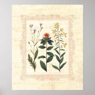 Vintage Wild Flowers Feminine Boudoir Print