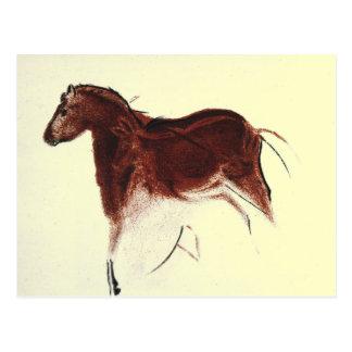 Vintage Wild Horse Cave Painting Postcard