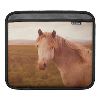 Vintage wild horse sleeve for iPads