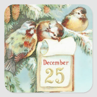 Vintage Winter Scene of Birds in a Tree Square Sticker