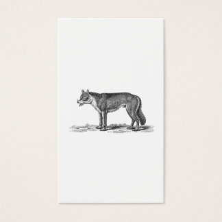 Vintage Wolf Illustration -1800's Wolves Template Business Card