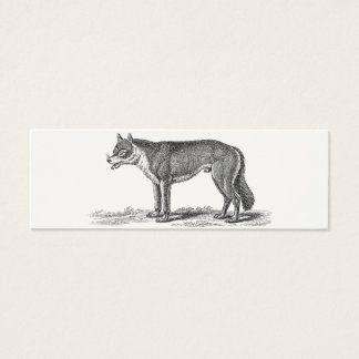 Vintage Wolf Illustration - 1800's Wolves Template Mini Business Card