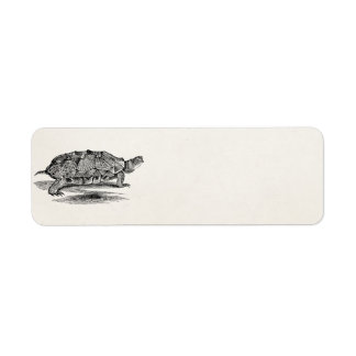 Vintage Wood Terrapin Turtle Template Blank