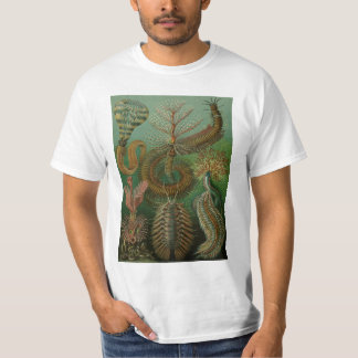 Vintage Worms Annelids Chaetopoda by Ernst Haeckel T-Shirt