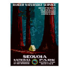 Vintage WPA Camping in Sequoia National Park Poster