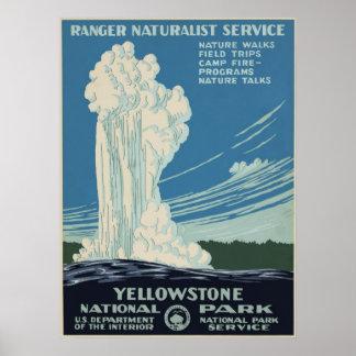 Vintage Yellowstone National Park Advertisement Print
