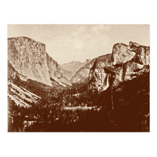 Vintage Yosemite National Park Post Card