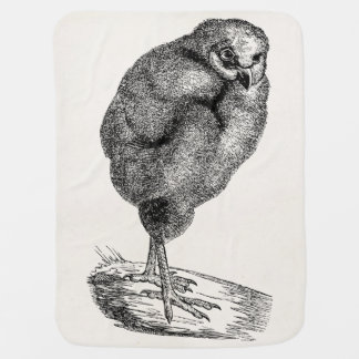 Vintage Young Barn Owl Bird - Baby Birds Template Buggy Blanket