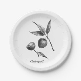 Vintage zapote exotic fruit etching paper plate 7 inch paper plate