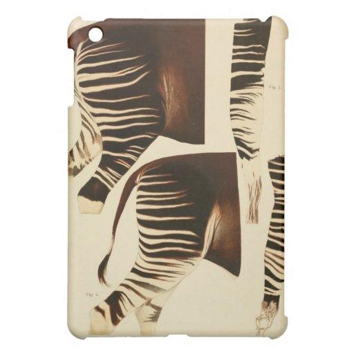 Vintage zebra / okapi scientific illustration ipad iPad mini covers