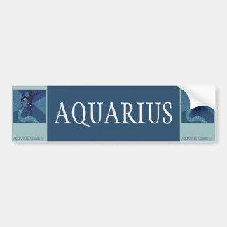 Vintage Zodiac Astrology, Aquarius Constellation Bumper Sticker