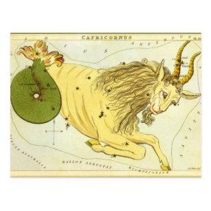 Vintage Zodiac, Astrology Capricorn Constellation Postcard