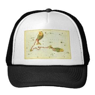 Vintage Zodiac Astrology Pisces Fish Constellation Cap