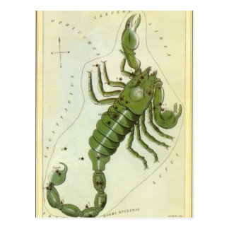 Vintage Zodiac, Astrology Scorpio Constellation Postcard