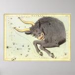 Vintage Zodiac Astrology Taurus Bull Constellation Poster