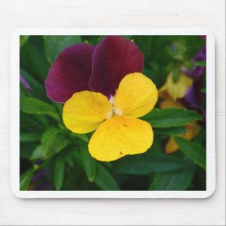Viola Flower Mousepads
