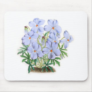 Viola Pedata Mousepad