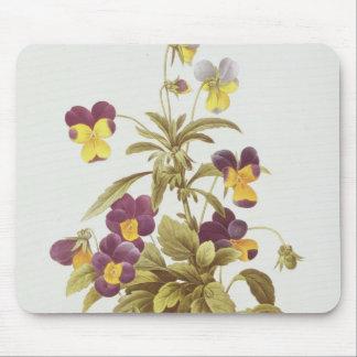 Viola Tricolour Mouse Mat