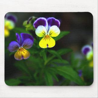 Violas Mousepads