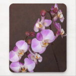 Violet and White Orchid Close Up Photograph Mousemats
