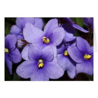 Violet Boquet Greeting Card