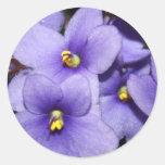 Violet Boquet Round Stickers