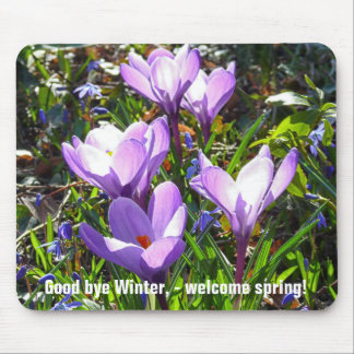 Violet crocuses 02.0.2.T, spring greetings Mouse Pad
