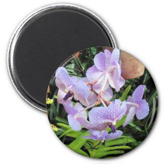 violet flower magnet