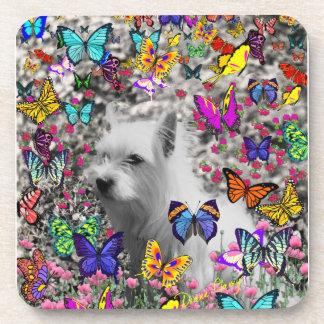 Violet in Butterflies – White Westie Dog Coasters