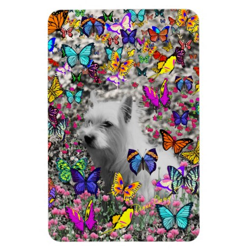 Violet in Butterflies – White Westie Dog Rectangle Magnets