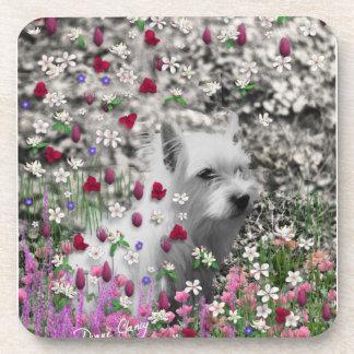 Violet in Flowers – White Westie Dog Beverage Coaster