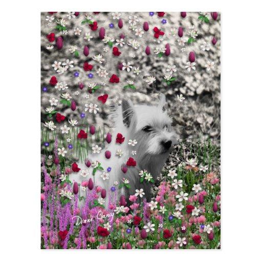 Violet in Flowers – White Westie Dog Postcards