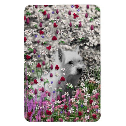 Violet in Flowers – White Westie Dog Rectangular Magnet