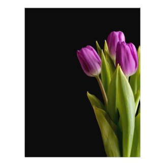 Violet tulips flyers