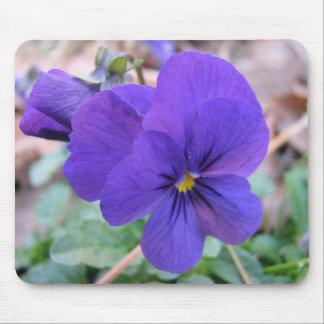 Violet Viola Mouse Pad