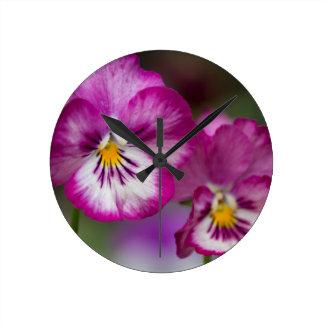 violets round clock