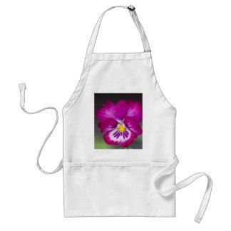 violets standard apron