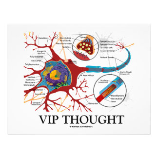 VIP Thought (Neuron / Synapse Humor) 21.5 Cm X 28 Cm Flyer