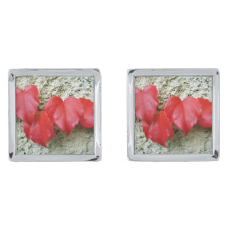 Virginia Creeper Leaves Cufflinks Silver Finish Cufflinks