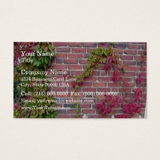 Virginia creeper on brick wall business card