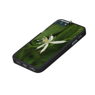 Virgin's Bower iPhone 5/5S Cover