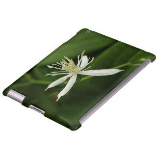 Virgin's Bower iPad Case